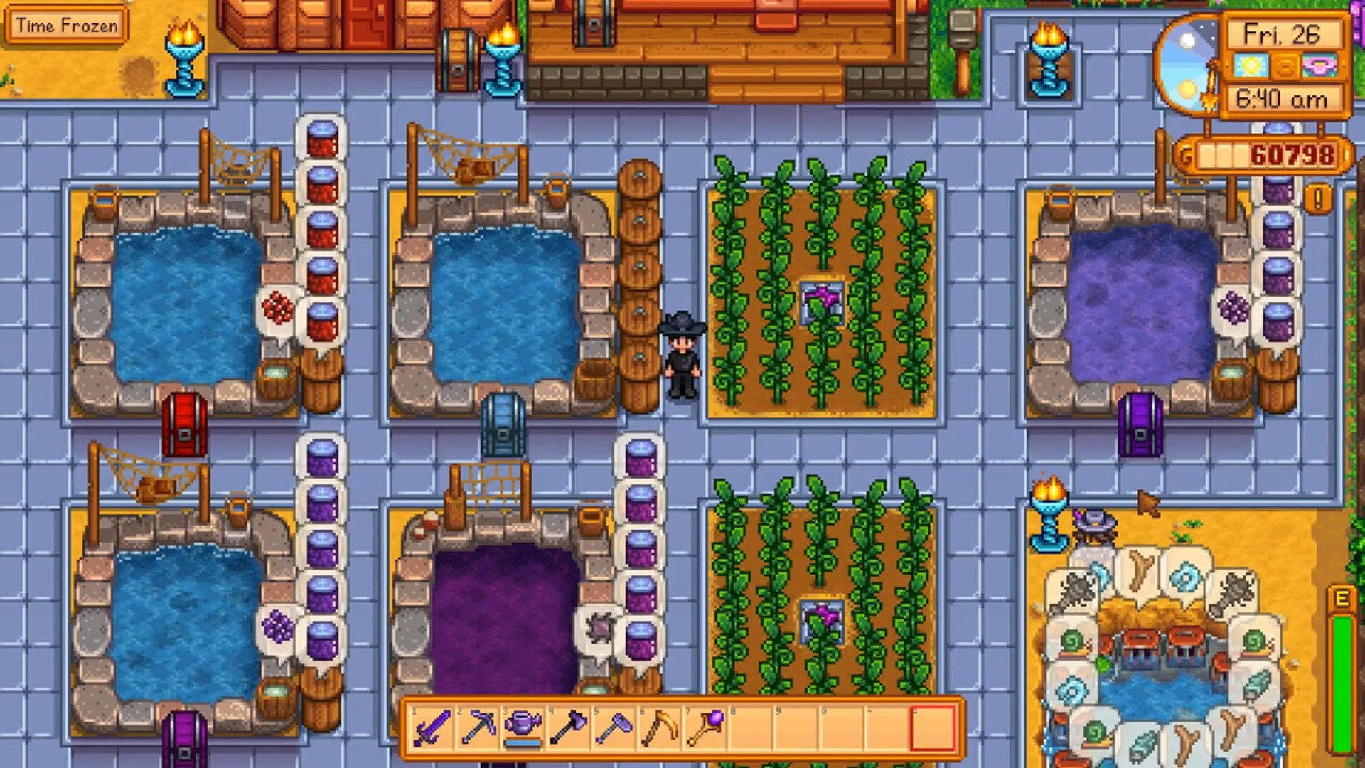 Stardew Valley: A Guide To Farming Your Fish Ponds And The Best Fish To Cultivate
