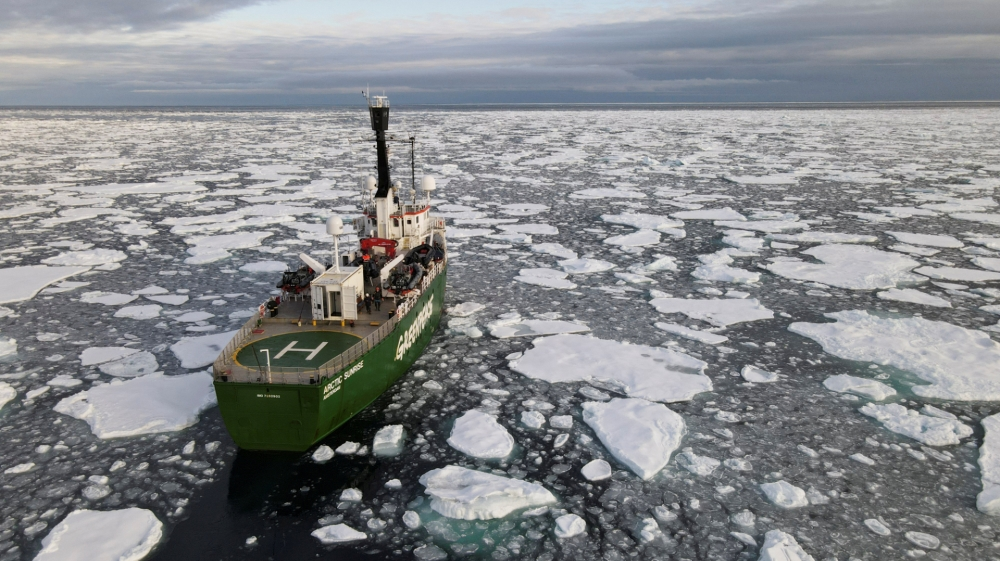 'Crazy year up north' as Arctic ice shrinks to near record-low