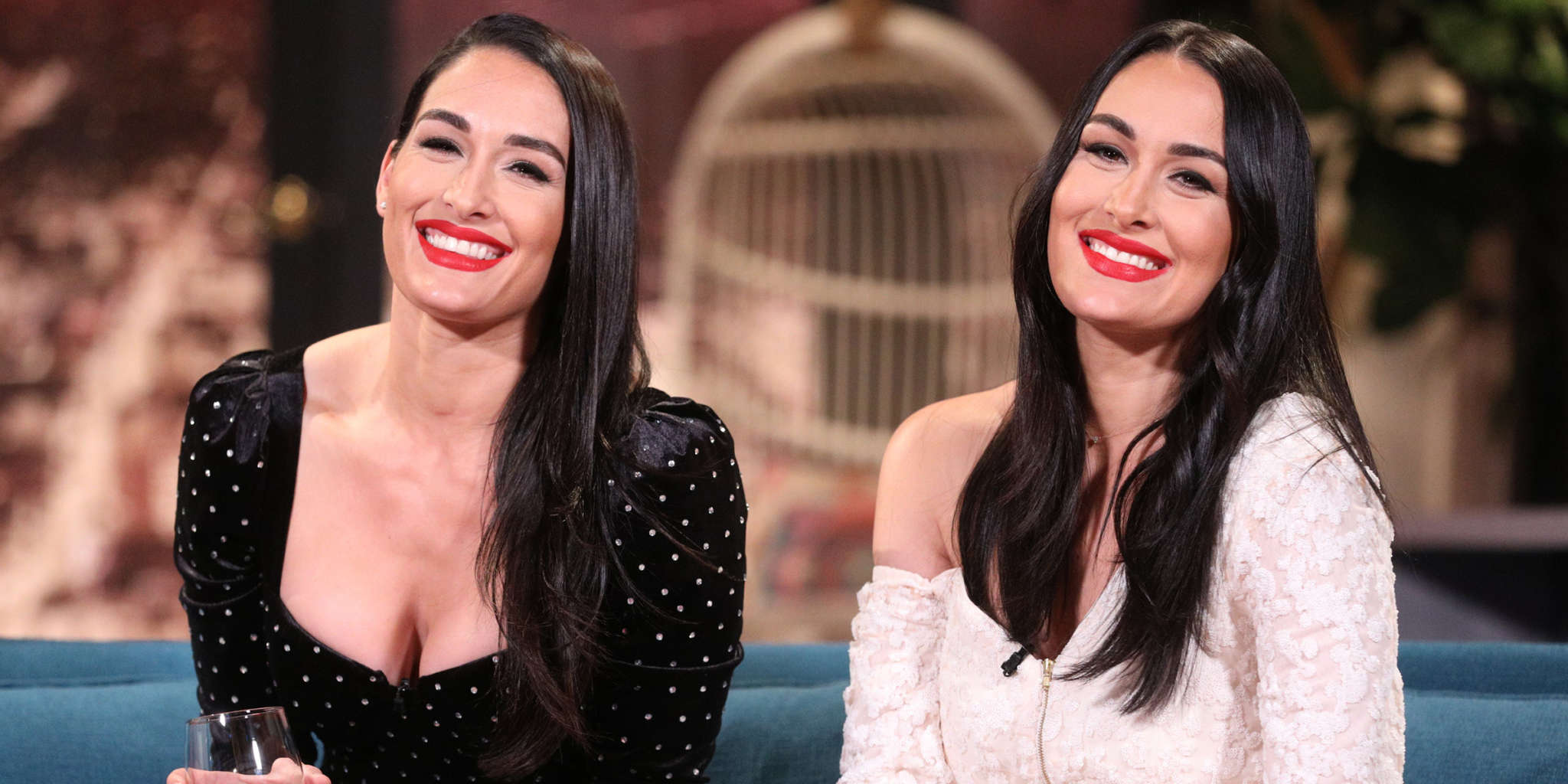 Brie Bella Says She's Done Having Kids – Reveals She Got Her Tubes Tied!