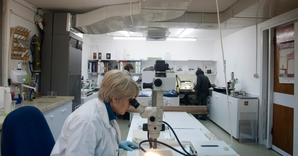 'Backward in time': Israeli scientists claim to reverse ageing