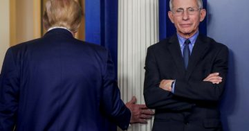 Fauci to have first 'substantive discussions' with Biden team